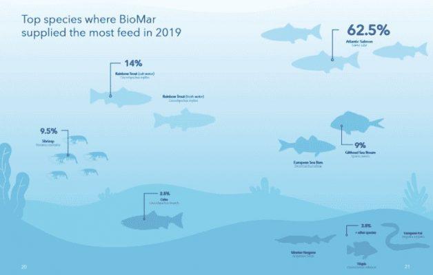 Doanh số bán thức ăn của BioMar theo loài trong năm 2019